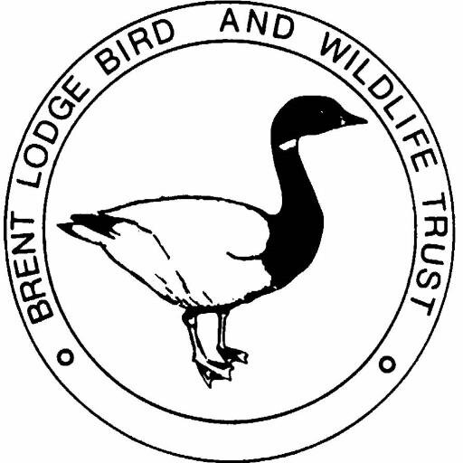 brentlodge-logo