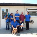 Welcome to St Francis Animal Welfare
